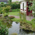 Tuin met pad naast regenwatervijver, groene over en verschillende soorten beplanting.