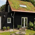 Tuinhuis met hellend begroeid dak.