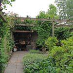 Tuin met pergola en verschillende de soorten beplanting.