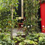Tuin met grote rode regenton.